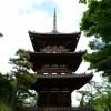 横浜市の三渓園に行ってきました