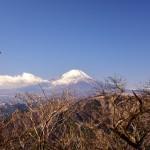 高尾山(二回目)に登ってきました。