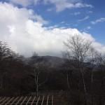 栃木県に行った