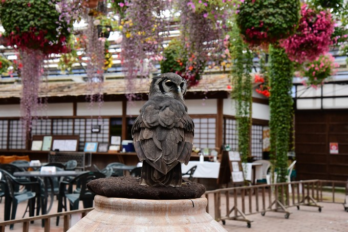 富士花鳥園