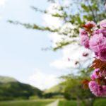 【観光】会津若松、猪苗代湖、五色沼に行ってきました