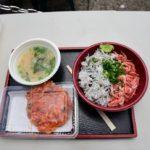 【観光】静岡市近辺に行ってきました!