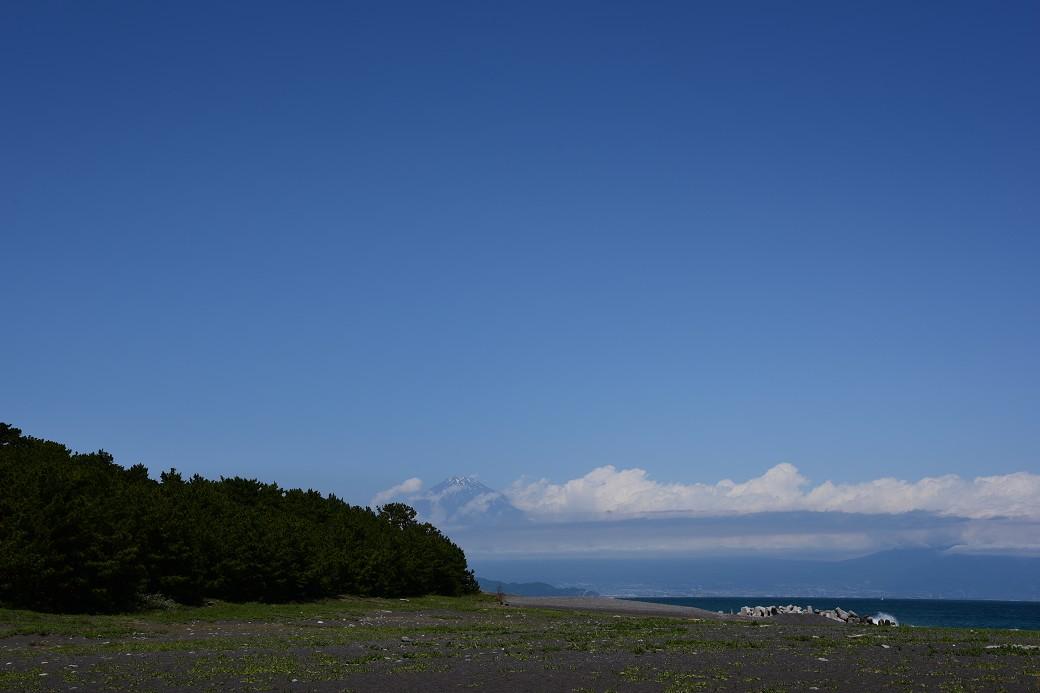 世界遺産三保の松原