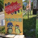 【B級観光地】東白川村の「つちのこ館」に行ってきました!